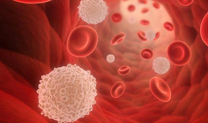 Booster le système immunitaire